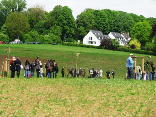 hochzeitsbaum-pflanzfest