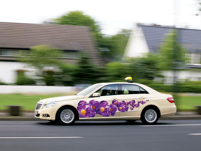taxi-zum-krokus-fest