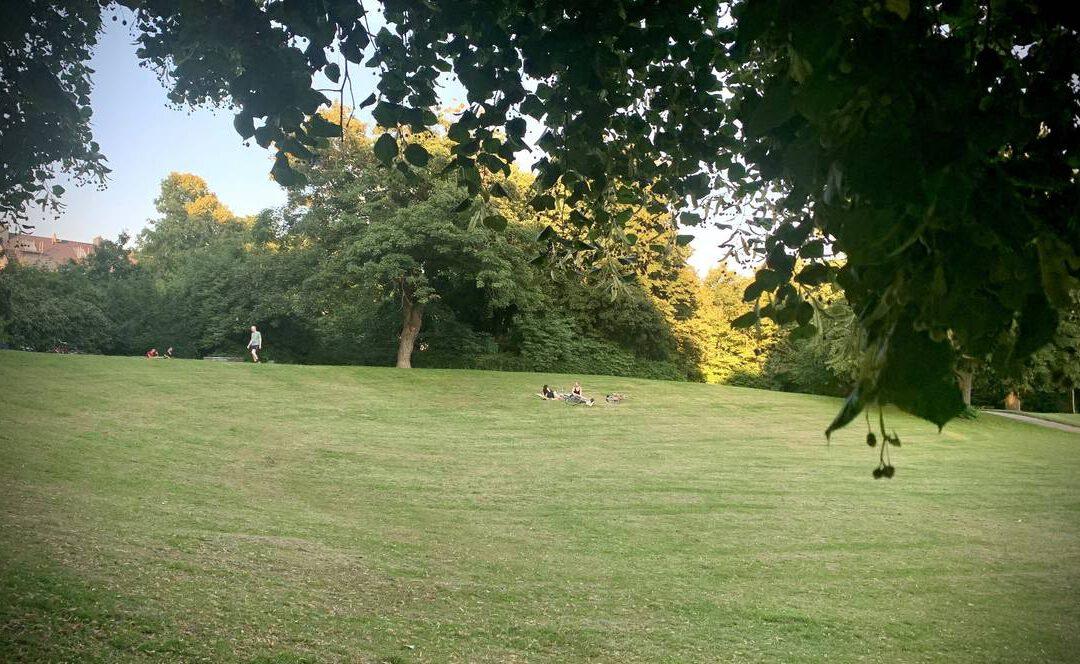 Parkcheck in Düsseldorf – Ein Grünstreifen mitten in Bilk